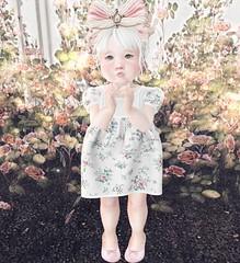 Floral Cutie (Emery/Teagan Parker) Tags: littlemarket wasabipills lazo wishes bellybean floral toddleedoo secondlife sl