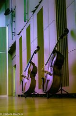 Contrabasses (kaprysnamorela) Tags: colors contrabass instrument music philharmonie wall