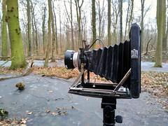 KW Patent Etui 9x12 (salparadise666) Tags: nilsvolkmer vintage camera 9x12 kwpatentetui view plate
