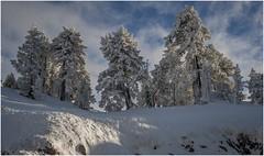 Larra-Belagua014 (Fermin Ezcurdia) Tags: larra belagua navarra pirineo nieve pyrenees esquinordico arlasarette anie