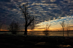 Cloudshow on Ottawa River (beyondhue) Tags: cloudy evening sunset winter ottawa river tree landscape beyondhue ontario quebec canada snow sky blue clouds dusk shore