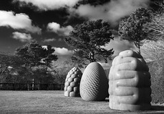 Fructus, Corpus and Phyllotaxus (Christian Hacker) Tags: fructus corpus phyllotaxus sculptures art artist peterrandallpage castledrogo thenationaltrust garden blackandwhite bw mono monochrome limestone massive canon eos50d tamron 1750mm exhibition ondisplay kilkennylimestone devon dartmoor geometry mathematicalprinciples structure brain fruit cells trees hedge clouds sky grass