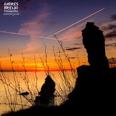 Girasoles de piedra (Andres Breijo http://andresbreijo.com) Tags: atardecer sunset playa beach contraluz backlight siluetas cielo sky molinodepapel nerja malaga andalucia españa spain