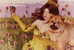 #944 - My little baby Fera (Vicky Victoria Macnelly) Tags: irrisistible nanika enchantment lode foxes keke