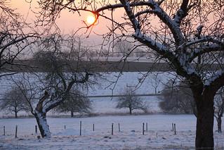 winter sunrise dance