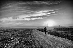 Viaje al final del día (una cierta mirada) Tags: sunset landscape dog sun clouds road paths bnw blackandwhite outodoors cloudscape meco sky earth