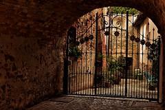 Scorci di Barolo (leonardogiangori) Tags: vino cancello scorcio barolo