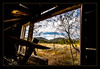 Looking out (MattArmstrongPhotography) Tags: matthew armstrong photgraphy mattarmstrongphotography idaho photos idahophotos