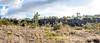 Fault Scarp (wyojones) Tags: hawaii hawaiivolcanoesnationalpark hilinapaliroad cliff faultscarp koaʻefault kilauea eastriftzone southwestriftzone kīlaueavolcano fault pali hawaiian kulanaʻokuaikipali ōhi'atrees