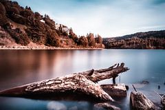 lake-gregory (mcook1517) Tags: longexposure lake water log sky mountain trees forest woods reflection clouds travel tourism 20mmnikkor nikon