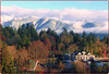 December's Farewell (Explore) (FernShade) Tags: vancouver stanleyparkseawall mountains scenery winterscenery scenic snowymountains vancouverrowingclub 2017yearend trees nature outdoor