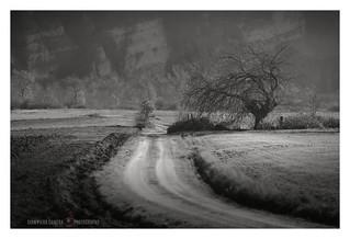 Dust road