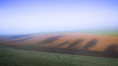 Schattenspiel 2 (misstilli) Tags: 2017 deutschland germany kraichgau landschaft landscape felder fields colors farben