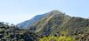 IMG_5945 (jaglazier) Tags: 121417 2017 andes copyright2017jamesaglazier december deciduoustrees ecuador pichincha quito trees cliffs cloudforest clouds forests landscapes mountains distritometropolitanodequito
