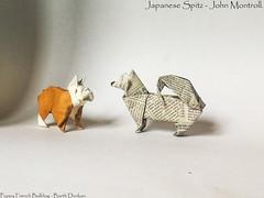 Japanese Spitz - John Montroll. (Magic Fingaz) Tags: anjing barthdunkan chien chó dog gremlins hond hund köpek origami perro pies пас пес собака หมา 개 犬 狗