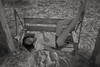 China doll, alcohol (chinese johnny) Tags: bw blackandwhite beautiful beauty beautifulgirl chinese chinadoll chinesegirl sad sensual ambient autobiographical woman windy beach tybee savannah georgia emotive emotion monochrome moody melancholy heartbroken hair longhair lyrics leica leicam9 longing lovely lonely love location m9 photoshoot portraitsession intimate dark dreamy girl bobdylan notimetothink