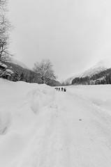 _D7K2185 (lions_italy) Tags: escursioni gsv lagodellefate macugnaga marcoturconi