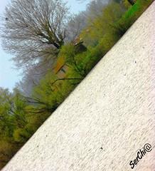 #vallidiargenta #argenta #photography #smile #photooftheday #composition #capture #moment #vivoemiliaromagna #emiliaromagna #emilia #romagna #serchi@ (SerChi@) Tags: vivoemiliaromagna vallidiargenta capture argenta moment smile romagna emilia composition serchi photography emiliaromagna photooftheday