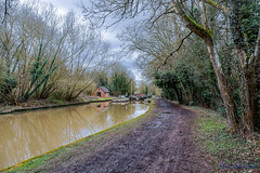 Offchurch Greenway 4th February 2018 (boddle (Steve Hart)) Tags: wild wilds wildlife life nature natural bird birds flowers flower fungii fungus insect insects spiders butterfly moth butterflies moths creepy crawley winter spring summer autumn seasons sunset weather sun sky cloud clouds panoramic landscape offchurch greenway 4th february 2018 100400mm is usm ii 2470mm standard steve hart boddle steven bruce wyke road wyken coventry united kingdon england great britain canon 5d mk4 6d radfordsemele unitedkingdom gb
