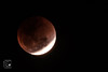 Total Lunar Eclipse (Bangalore)-31st-Jan-2018 (krvishal tdtfly) Tags: supermoon bluemoon bloodmoon coppermoon eclipse totallunareclipse eclipsetimes aryabhata சூப்பர்நீலநிலவுகிரகண fullmoon moonsorbit danceofshadows cosmicorbits anothereye bengaluru bornfree doctors singing decorateyourself dashing glamour appealing charming womensfitness fitnessexpert feelthevibe smile magicalpeoples wellperformed goldenheart passion befit love feelings expression happiness communityhelpers nightingaleofbangalore musicalevening loveyouzindagi beingperformer positivity happymothers fulfillinglifeexperience bangalore fitness togetherwewilldomore music magicalmusical glam godtrends templenews krvishal innerbeauty beautifulsole nuritya fantasticpeoples feelthemusic magicalartist anchor perform emcee host beinglyricist beinghost poetry poet poems சூப்பர்நீலநிலவுகிரகணம் superbluebloodmoon