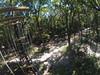 G0121307 (harleyhurricane1) Tags: line zip zipline ziplinepark dadecityflorida treehoppers centralflorida largestziplineparkincentralfl dadecity