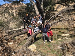 Dynamic Edge Consulting- Hiking in Eaton Canyon! (dynamicedgeconsultinglb) Tags: dynamicedgeconsulting hiking waterfall weekendadventures losangeles pasadena southbay carson hikingtrip fitness health adventure exploring