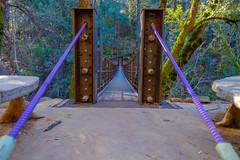 DSCF1484.jpg (RHMImages) Tags: longexposure creek landscape waterfall river deercreek bridge stream xt2 tributetrail fuji nevadacity fujifilm suspensionbridge