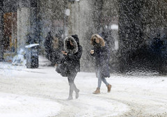 snowstorm (bea-9) Tags: ontario canada snowstorm davidsuzuki frost women snow climatechange globalwarming building street road