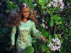 (Linayum) Tags: barbie barbiedoll barbiecurvy barbiethelook mattel doll dolls muñeca muñecas toys toycollector curvybarbie linayum