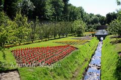 Colclough Walled Garden (Ken Meegan) Tags: colcloughwalledgarden tinternabbey saltmills cowexford ireland garden stream