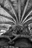 Pillar (H&T PhotoWalks) Tags: pillar cloister monastery belém lisboa lisbon portugal blackwhite blackandwhite bw canoneos400d sigma18250 tan