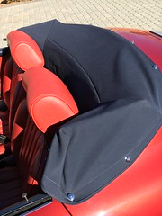 Tonneau Cover and Headrests