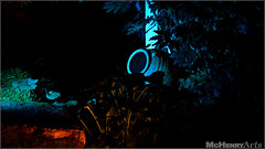 Enchanted Gardens 2017 - 146 (mchenryarts) Tags: arcen dunkelheit entertainment event events farbe fotojournalismus kasteeltuinen laternen licht lichtinszenierung lichtspektakel niederlande parkleuchten photojournalism schloessgaerten show garten laser lasershow