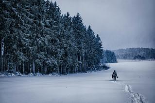 Snow-clad fields.