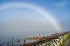 Morning fogbow (zxorg) Tags: fog fogbow fograinbow whiterainbow river fraserriver britishcolumbia richmond canada