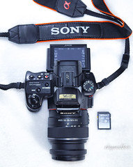 DSC09483 (nghich_thuy_hang) Tags: sony a37 a57 dslt sam sam1 1855 1855mm f3556 yn560iv