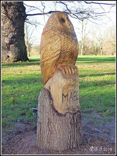 'Mabel' Wooden Sculpture by tree surgeon David Good