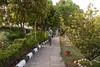 P1030267a (sensaos) Tags: india sensaos travel chhattisgarh 2013 asia