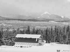 180109-37 Avec vue sur les montagnes (clamato39) Tags: barn grange noiretblanc blackandwhite bw monochrome rural hiver winter snow neige charlevoix provincedequébec québec canada