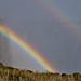 Vic Falls double rainbow