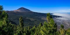 Vulkan Teide auf Teneriffa (ulrichcziollek) Tags: spanien kanaren kanarischeinseln tenerife teneriffa teide berg wald vulkan dunst nebel