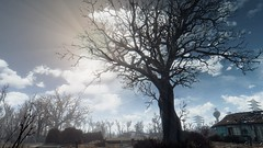 Fallout 4 (Sagittarius_) Tags: fallout commonwealth sole survivor bethesda sanctuary