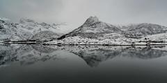 Mountains Reflected, Norway (pixellesley) Tags: norway mountains reflections snow ice snowstorm fjord water lake mono landscape seascape lesleygooding roadtrip lofoten