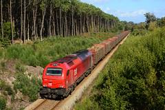 TK 6007 (Nelso M. Silva) Tags: takargo linha minho diesel euro 4000 335 6007 mercadorias madeira vossloh