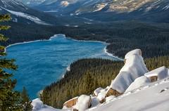 Jewel of the Canadian Rockies (Philip Kuntz) Tags: peytolake snow bowsummit icefieldsparkway canadianrockies lakes banff banffnationalpark alberta canada