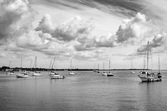 Boats in Bay (t conway) Tags: