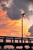 WellingtonPtPelican (alextdel) Tags: darktable wellingtonpoint queensland sunrise pelican jetty