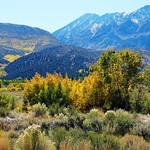 Autumn in Sierra Nevada Foothills, CA 10-17 thumbnail