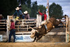 Walcha Rodeo 17. (jasoncstarr) Tags: rodeo walcha nsw cowboy cowgirl cow buckingbronc bronc bull bullriding steerwrestling ropeandtie roping canon canoneos6d 70200mm tamron70200mmf28lens sport clowns