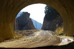 IMG_1990 (burhansakir) Tags: feke ada adana hayvan eşek ışık tünel kozan türkiye doğa nature